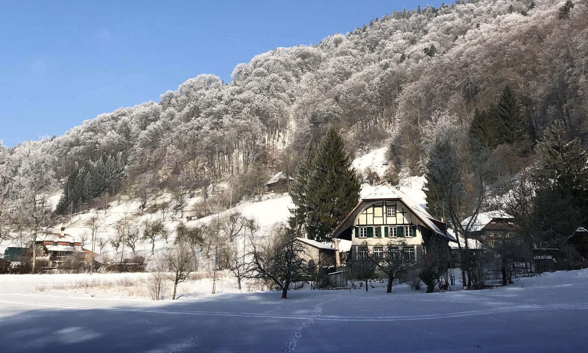 Gesamtschule Lindental